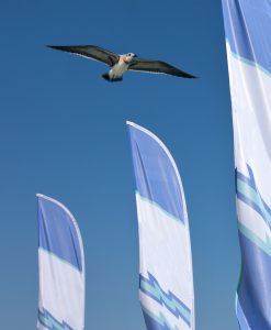 Feather Flags